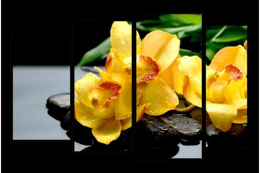 Модульная картина  Орхидея желтый фон