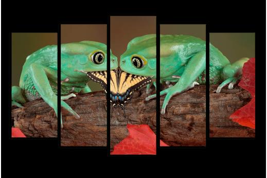 Модульная картина Лягушки